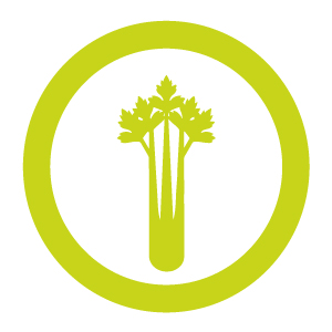 Celery icon for MKG Foods