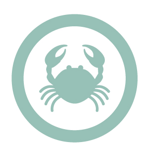 Crustaceans icon for MKG Foods