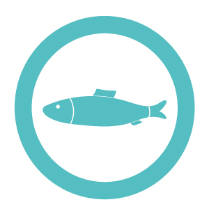 Fish icon for MKG Foods