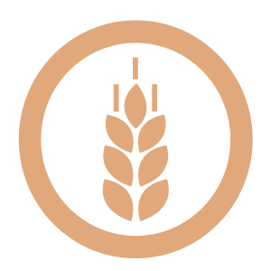 Gluten Cereals icon for MKG Foods