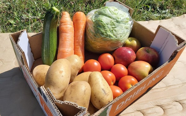 Small fresh produce box with fruit and vegetables. Available for home delivery with MKG Foods.
