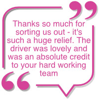 Home Delivery testimonial - graphic 1